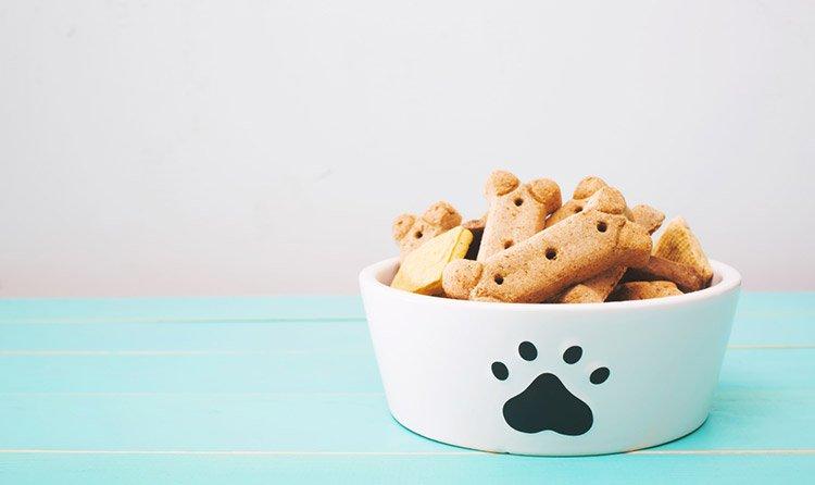 treats for training dog