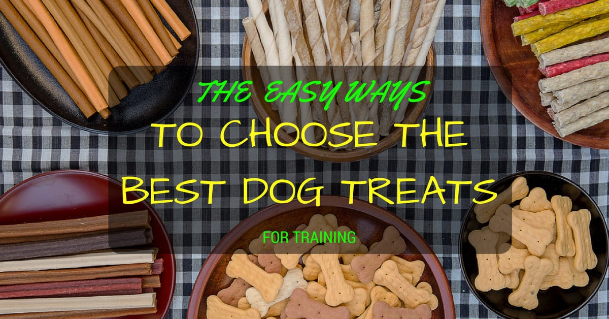 The Easy Ways to Choose Dog Treats for Training