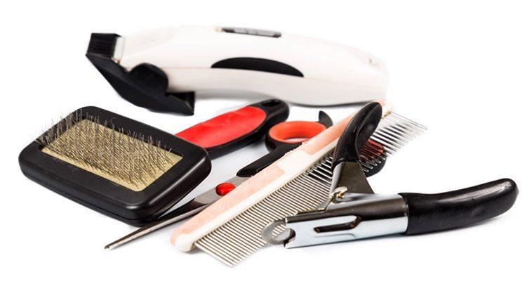 brush for thin hair